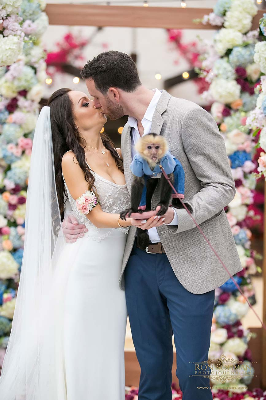 Bride and groom kissing, with small pet monkey sitting on their hands