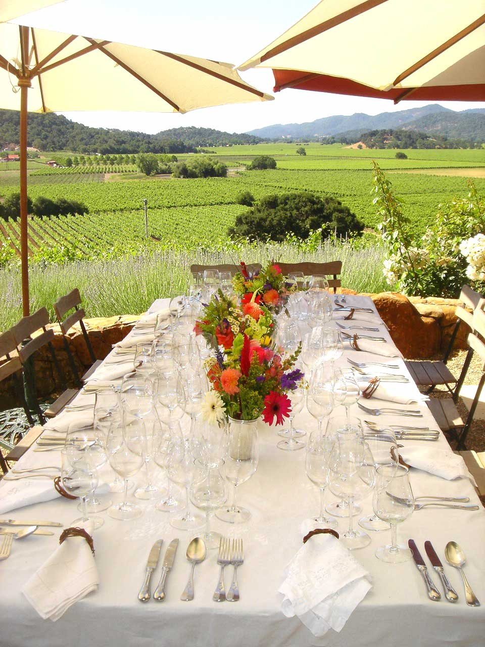 Tabletop design with crystal and flowers overlooking a vineyard in Napa valley