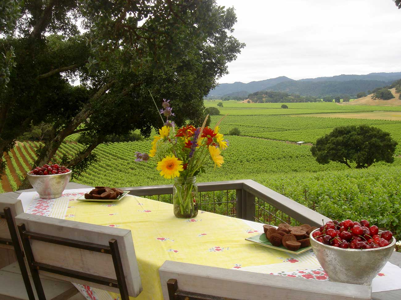 Table with fruit and flowers overlooking vineyards in Napa valley